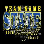 state-volleyball-web-13