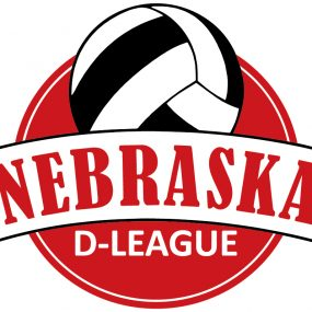 D-League Volleyball